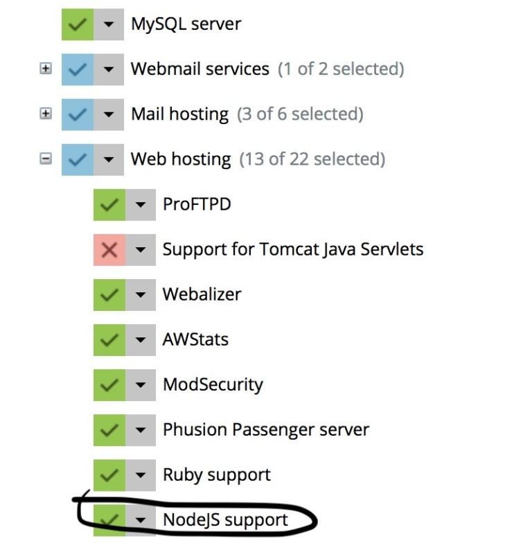 enabling Node.js support in Plesk